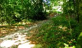 Randonnée Marche LONGPONT - en forêt de Retz_36_Longpont_Mareuil sur Ourcq_A - Photo 15