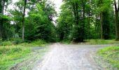 Randonnée Marche LONGPONT - en forêt de Retz_36_Longpont_Mareuil sur Ourcq_A - Photo 46