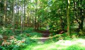 Randonnée Marche LONGPONT - en forêt de Retz_36_Longpont_Mareuil sur Ourcq_A - Photo 9