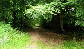 Randonnée Marche LONGPONT - en forêt de Retz_36_Longpont_Mareuil sur Ourcq_A - Photo 97