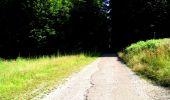 Randonnée Marche LONGPONT - en forêt de Retz_36_Longpont_Mareuil sur Ourcq_A - Photo 77