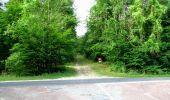 Randonnée Marche LONGPONT - en forêt de Retz_36_Longpont_Mareuil sur Ourcq_A - Photo 37