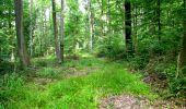 Randonnée Marche LONGPONT - en forêt de Retz_36_Longpont_Mareuil sur Ourcq_A - Photo 64