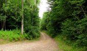 Randonnée Marche LONGPONT - en forêt de Retz_36_Longpont_Mareuil sur Ourcq_A - Photo 106