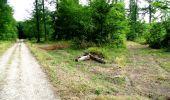 Randonnée Marche LONGPONT - en forêt de Retz_36_Longpont_Mareuil sur Ourcq_A - Photo 56
