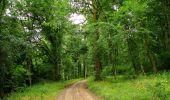 Randonnée Marche LONGPONT - en forêt de Retz_36_Longpont_Mareuil sur Ourcq_A - Photo 90