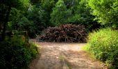 Randonnée Marche LONGPONT - en forêt de Retz_36_Longpont_Mareuil sur Ourcq_A - Photo 86
