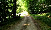 Randonnée Marche LONGPONT - en forêt de Retz_36_Longpont_Mareuil sur Ourcq_A - Photo 83