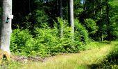 Randonnée Marche LONGPONT - en forêt de Retz_36_Longpont_Mareuil sur Ourcq_A - Photo 50