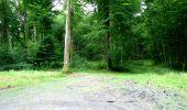 Randonnée Marche LONGPONT - en forêt de Retz_36_Longpont_Mareuil sur Ourcq_A - Photo 44
