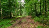 Randonnée Marche LONGPONT - en forêt de Retz_36_Longpont_Mareuil sur Ourcq_A - Photo 60