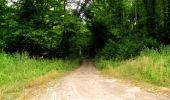 Randonnée Marche LONGPONT - en forêt de Retz_36_Longpont_Mareuil sur Ourcq_A - Photo 87
