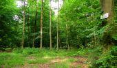 Randonnée Marche LONGPONT - en forêt de Retz_36_Longpont_Mareuil sur Ourcq_A - Photo 62
