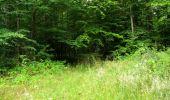 Randonnée Marche LONGPONT - en forêt de Retz_36_Longpont_Mareuil sur Ourcq_A - Photo 98