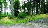 Randonnée Marche LONGPONT - en forêt de Retz_36_Longpont_Mareuil sur Ourcq_A - Photo 45