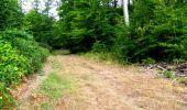 Randonnée Marche LONGPONT - en forêt de Retz_36_Longpont_Mareuil sur Ourcq_A - Photo 53