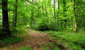 Randonnée Marche LONGPONT - en forêt de Retz_36_Longpont_Mareuil sur Ourcq_A - Photo 61