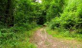 Randonnée Marche LONGPONT - en forêt de Retz_36_Longpont_Mareuil sur Ourcq_A - Photo 105