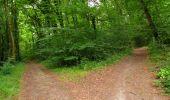 Randonnée Marche LONGPONT - en forêt de Retz_36_Longpont_Mareuil sur Ourcq_A - Photo 113