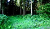 Randonnée Marche LONGPONT - en forêt de Retz_36_Longpont_Mareuil sur Ourcq_A - Photo 10