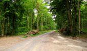 Randonnée Marche LONGPONT - en forêt de Retz_36_Longpont_Mareuil sur Ourcq_A - Photo 23