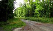 Randonnée Marche LONGPONT - en forêt de Retz_36_Longpont_Mareuil sur Ourcq_A - Photo 24