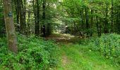 Randonnée Marche LONGPONT - en forêt de Retz_36_Longpont_Mareuil sur Ourcq_A - Photo 74