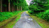 Randonnée Marche LONGPONT - en forêt de Retz_36_Longpont_Mareuil sur Ourcq_A - Photo 4