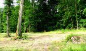 Randonnée Marche LONGPONT - en forêt de Retz_36_Longpont_Mareuil sur Ourcq_A - Photo 58