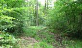Randonnée Marche LONGPONT - en forêt de Retz_36_Longpont_Mareuil sur Ourcq_A - Photo 65