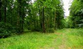 Randonnée Marche LONGPONT - en forêt de Retz_36_Longpont_Mareuil sur Ourcq_A - Photo 29