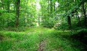 Randonnée Marche LONGPONT - en forêt de Retz_36_Longpont_Mareuil sur Ourcq_A - Photo 63