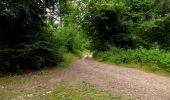 Randonnée Marche LONGPONT - en forêt de Retz_36_Longpont_Mareuil sur Ourcq_A - Photo 104
