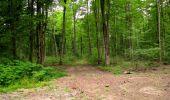 Randonnée Marche LONGPONT - en forêt de Retz_36_Longpont_Mareuil sur Ourcq_A - Photo 27