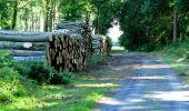 Randonnée Marche LONGPONT - en forêt de Retz_36_Longpont_Mareuil sur Ourcq_A - Photo 40