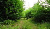 Randonnée Marche LONGPONT - en forêt de Retz_36_Longpont_Mareuil sur Ourcq_A - Photo 96