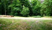 Randonnée Marche LONGPONT - en forêt de Retz_36_Longpont_Mareuil sur Ourcq_A - Photo 38