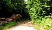 Randonnée Marche LONGPONT - en forêt de Retz_36_Longpont_Mareuil sur Ourcq_A - Photo 84