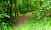 Randonnée Marche LONGPONT - en forêt de Retz_36_Longpont_Mareuil sur Ourcq_A - Photo 67