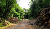 Randonnée Marche LONGPONT - en forêt de Retz_36_Longpont_Mareuil sur Ourcq_A - Photo 85