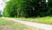 Randonnée Marche LONGPONT - en forêt de Retz_36_Longpont_Mareuil sur Ourcq_A - Photo 57