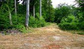 Randonnée Marche LONGPONT - en forêt de Retz_36_Longpont_Mareuil sur Ourcq_A - Photo 52