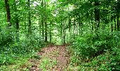 Randonnée Marche LONGPONT - en forêt de Retz_36_Longpont_Mareuil sur Ourcq_A - Photo 42