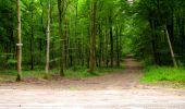 Randonnée Marche LONGPONT - en forêt de Retz_36_Longpont_Mareuil sur Ourcq_A - Photo 22
