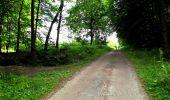 Randonnée Marche LONGPONT - en forêt de Retz_36_Longpont_Mareuil sur Ourcq_A - Photo 72