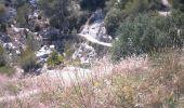 Trail Mountain bike GRUISSAN - ile de St Martin + la clape - Photo 1