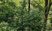 Trail Walk Profondeville - Fraises et Sibérie  - Photo 5
