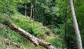 Trail Walk Profondeville - Fraises et Sibérie  - Photo 3