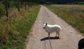 Trail Walk Bièvre - kapel1 - Photo 1