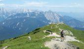 Randonnée Marche Unknown - Seefelder Spitze - Photo 13